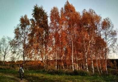 У канцы тыдня на тэрыторыю Беларусі прыйдзе антыцыклон